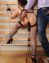 Free bizarre sex pics