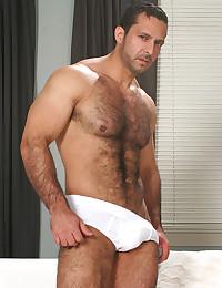 Wicked hairy bear