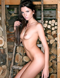 Stunning beauty shows her nak...
