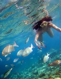 Underwater pics of naked teen
