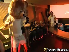 Dancing Bear - Watch The Bear In Action