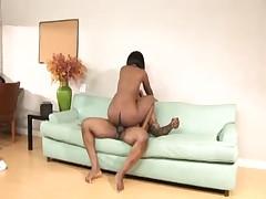 Pumping big tits Stacy Adams